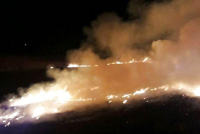 Біля водойми на Озерній невідомі влаштували пожежу