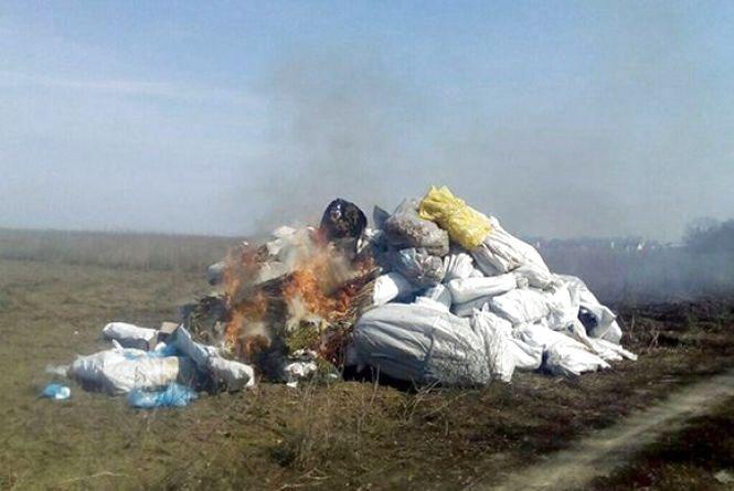 Поліцейські спалили повну вантажівку наркотиків