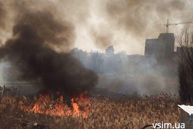 Через пожежу Озерна вкрилася димом (ФОТО)