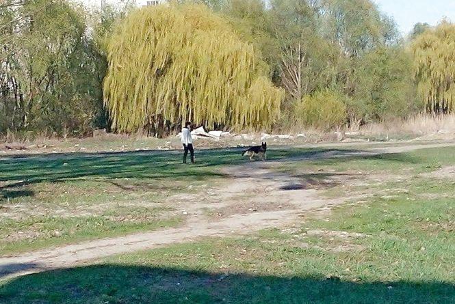 Співоче поле може стати спортивним. Що буде на місці, де вигулюють собак і влаштовують пікніки