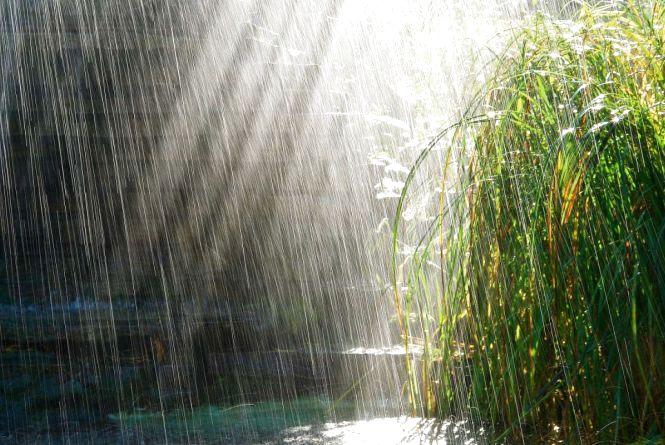 У вівторок, 16 травня, можливий дощ