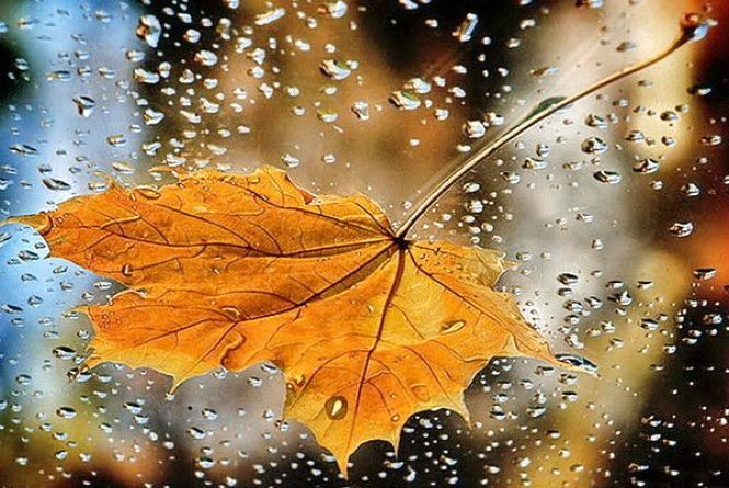 Без дощу не обійдеться: погода на тиждень у Хмельницькому