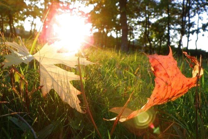Осіннє сонце ще погріє містян: погода на вихідні у Хмельницькому