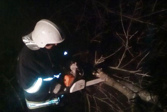 Наслідки негоди на Хмельниччині: повалені дерева та будинки без світла