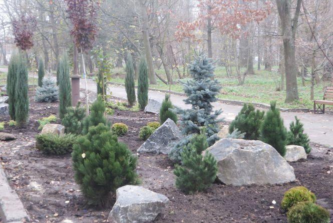 Магнолії, сосни, барбарис: парк Чекмана озеленять за 160 тисяч