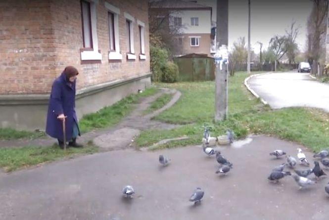 У Шепетівці 95-річна бабуся доглядає за сотнею голубів