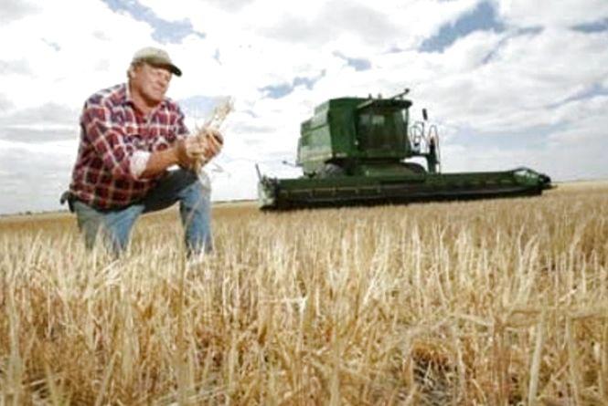 19 листопада - День працівників сільського господарства в Україні