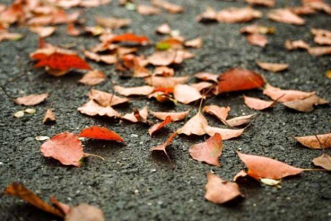В п'ятницю, 24 листопада, у Хмельницькому сухо та прохолодно
