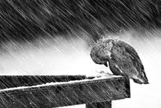 Наслідки атмосферного фронту: якою буде погода у Хмельницькому в понеділок, 27 листопада