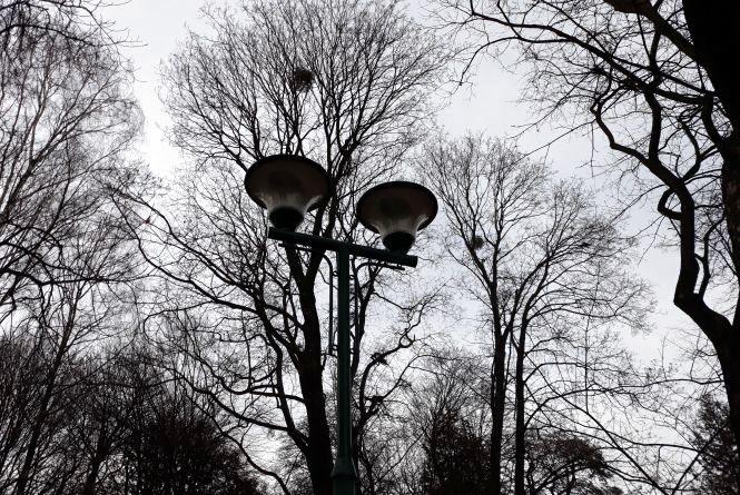 Потепління та хмарне небо обіцяють хмельничанам у п'ятницю, 23 березня