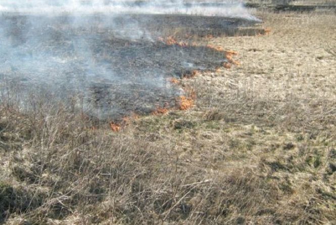 Хмельничан закликають не палити суху траву