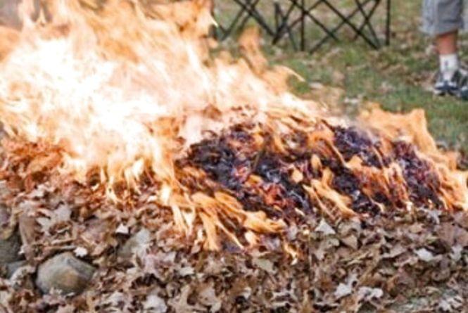 За паління опалого листя хмельничанам загрожує до 1700 гривень штрафу
