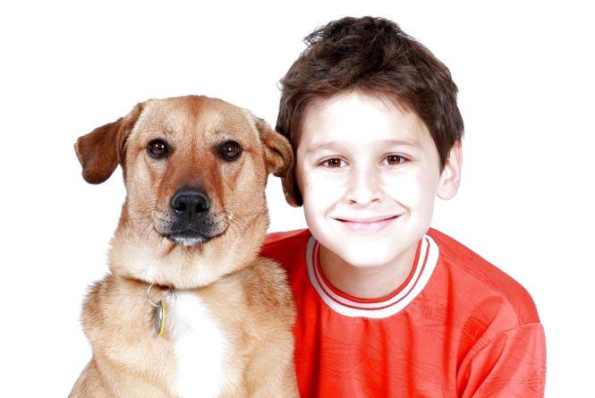 Маленькі діти та тварини: чи варто боятися?