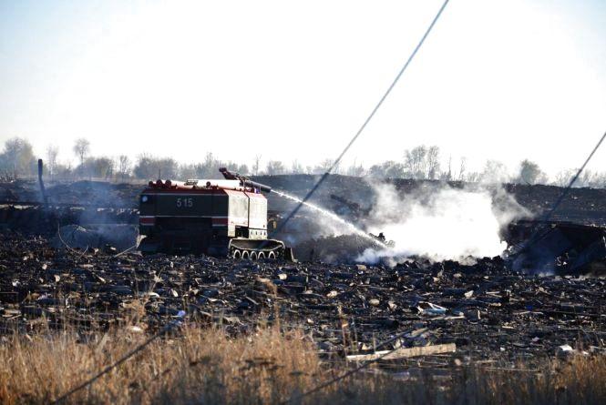6 листопада - Міжнародний день запобігання експлуатації навколишнього середовища під час війни