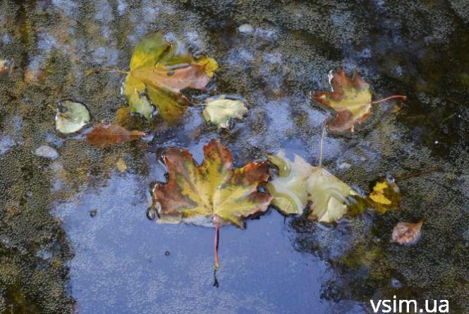 Ранкова паморозь та похолодання. Прогноз погоди у Хмельницькому на 7 листопада