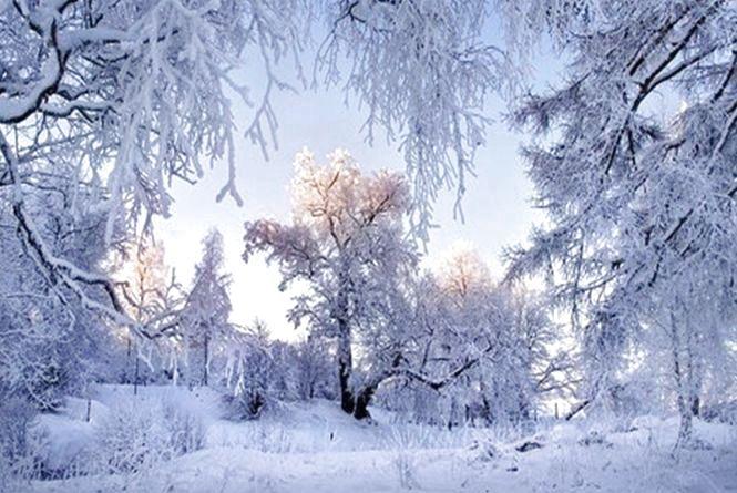 Стрімке потепління та невеликий сніг: погода у Хмельницькому на вихідні