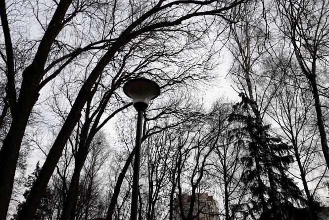 Привітна погода та потепління. Антициклон Хлоя суне на Україну