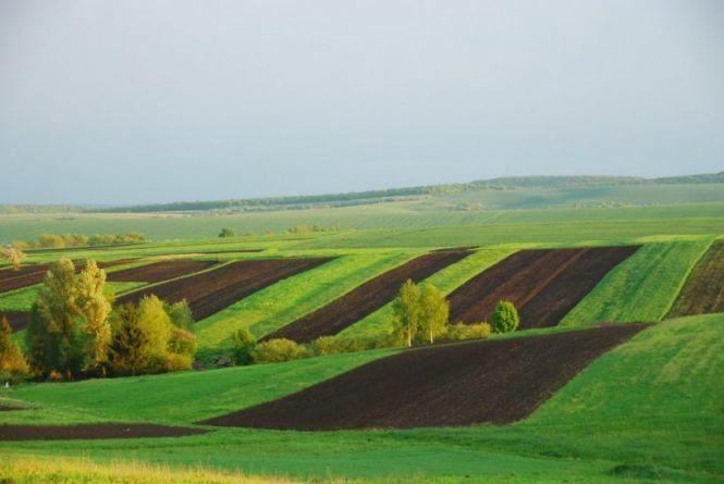 На Хмельниччині АТОвці отримали понад 18 тисяч гектарів землі