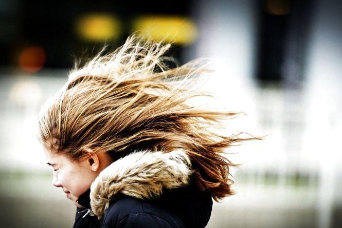 Обережно, сильний вітер! На Хмельниччині оголосили штормове попередження