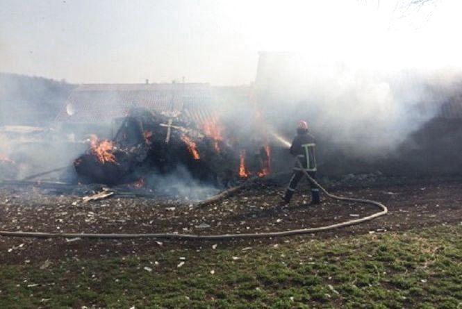Багато диму. За день на Хмельниччині згоріло 22 гектари землі
