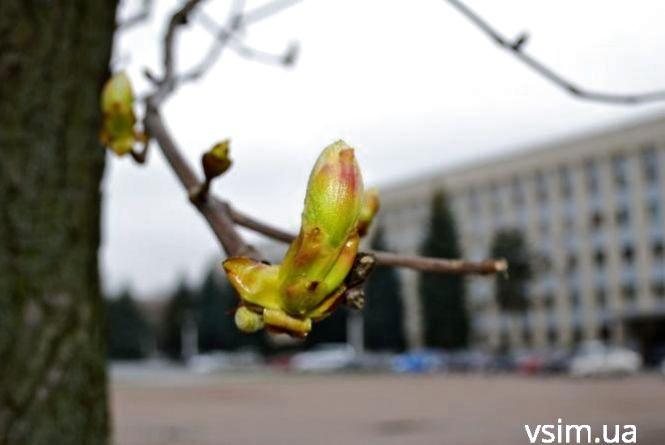 Мокрий сніг та нічні заморозки: прогноз погоди у Хмельницькому на 16 квітня