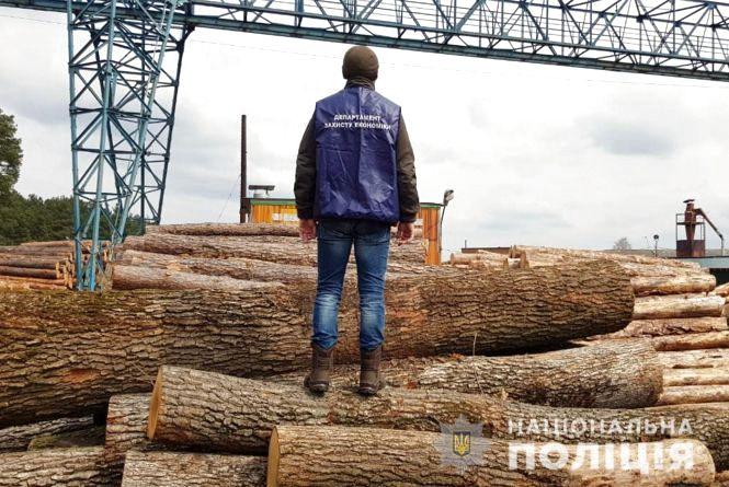 """""""Схема на мільйон"""". На Хмельниччині посадовці незаконно розкрадали ліс"""