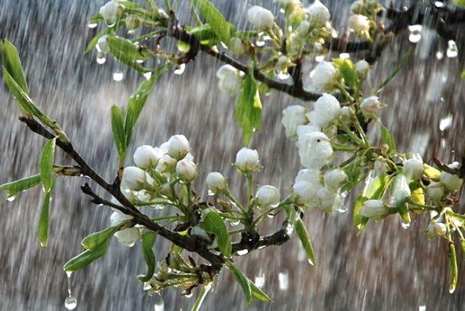Несвяткова погода. Синоптик дала прогноз українцям на Великдень