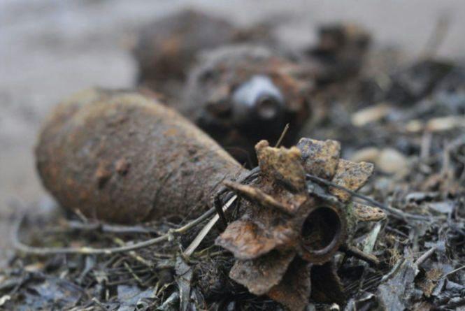 """Небезпечний """"скарб"""". Понад 30 снарядів знайшли біля села на Ярмолинеччині"""