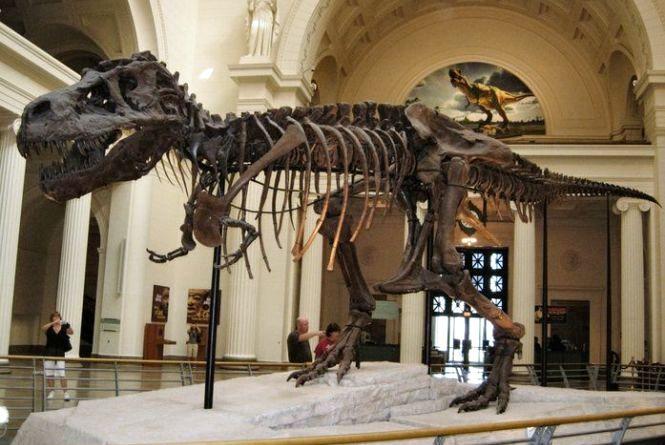 18 травня — Міжнародний день музеїв