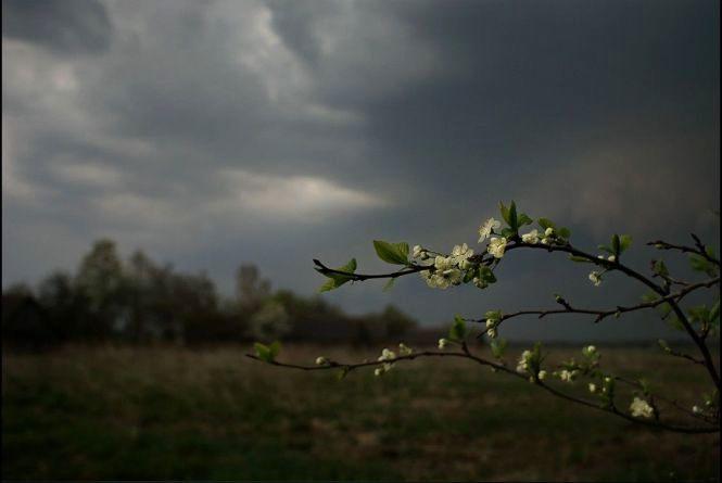 Грози не відступають. Прогноз погоди у Хмельницькому на 19 травня