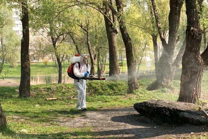 Хмельничанка Ольга просить обробити місцеві парки і сквери від кліщів
