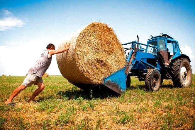 На Хмельниччині фермери незаконно використовували державні землі