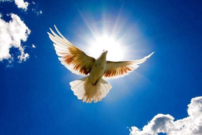 17 червня — День Святого Духа