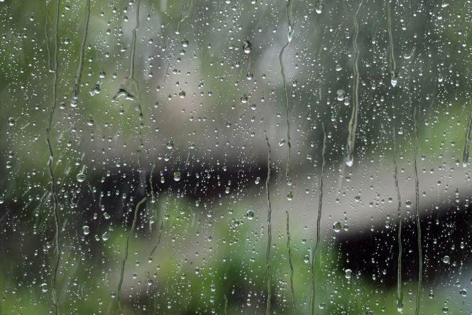 Дощі та грози накриють більшу частину Україну 24 липня. Чи омине Хмельницький?