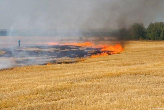 У Хмельницькому районі під час гасіння поля виявили труп