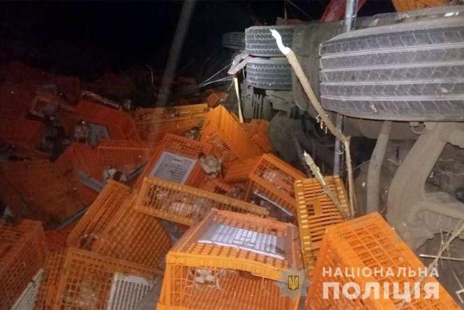 На Хмельниччині перекинулась вантажівка з курами