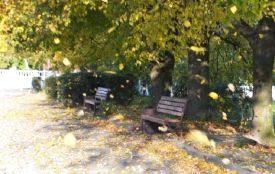 Сильний вітер, дощ та мокрий сніг.  Прогноз погоди у Хмельницькому на 24 жовтня