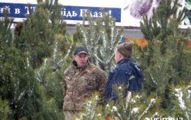Нелегальний ялинковий базар біля «Плази»: чиновники та поліція знову розводять руками