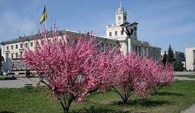 """Фотоконкурс """"Весна у великому місті"""""""